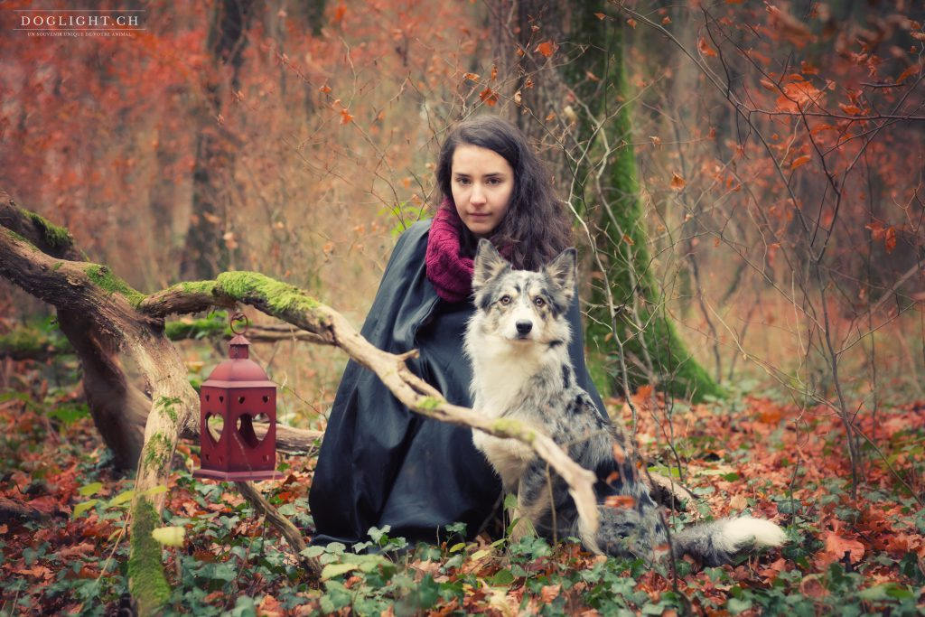 Séance photo magazine avec un chien loup border collie
