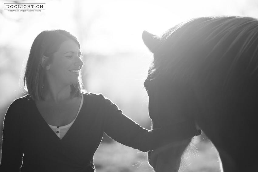 Un calendrier de l 39 avent chiens chevaux no l doglight - Calendrier de l avent light ...