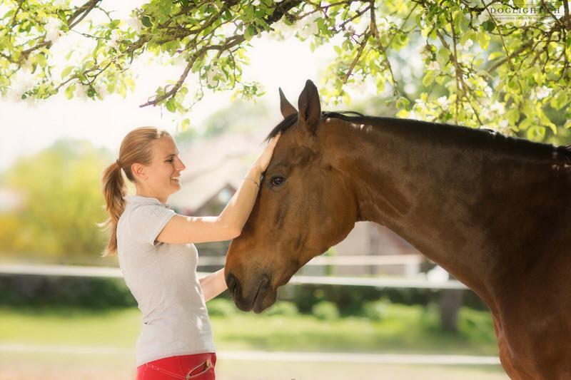 Photographe gratouilles cheval et cavalière lumière