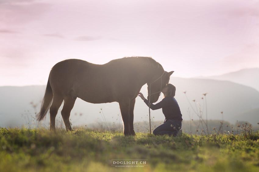 Photo cheval bisous complicité face aux montagnes
