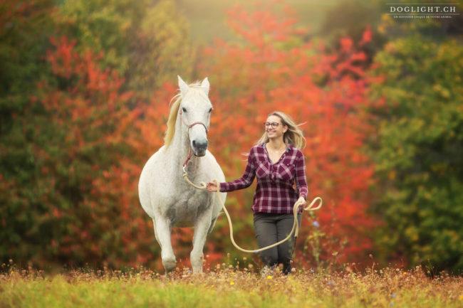 Cheval blanc qui court en automne - Photographe