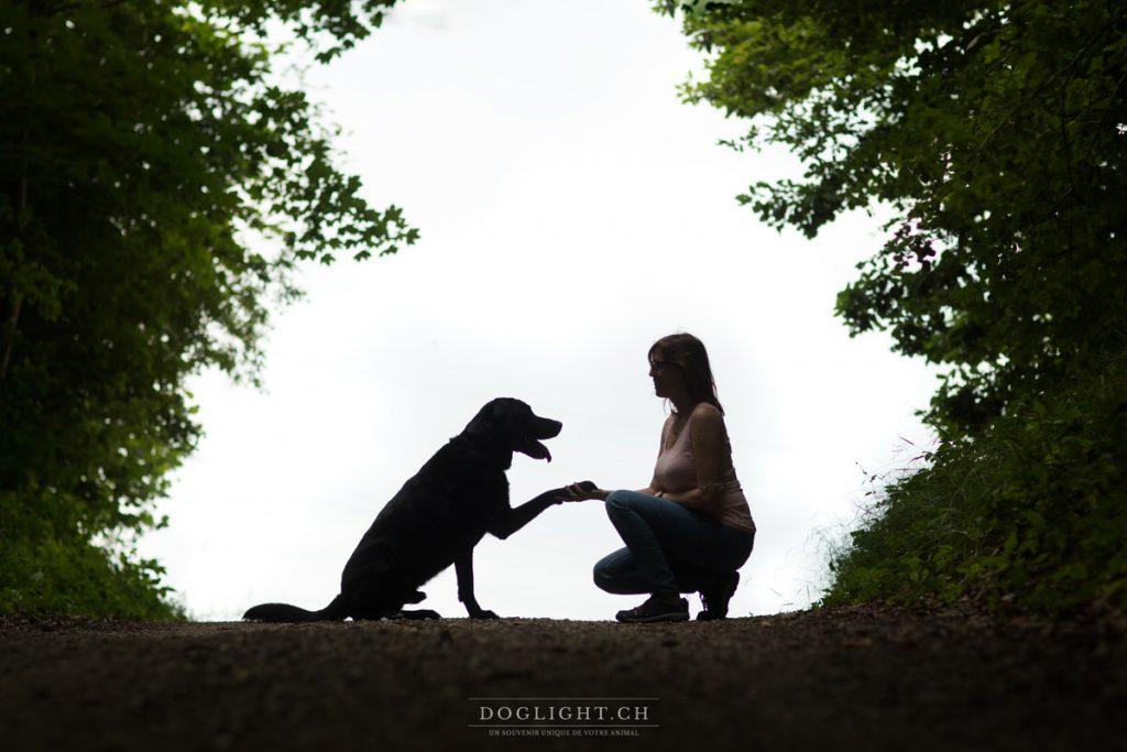 Silhouette labrador noir - Chien et sa maîtresse relation
