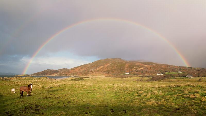La péninsule d'Inishowen arc-en-ciel chevaux