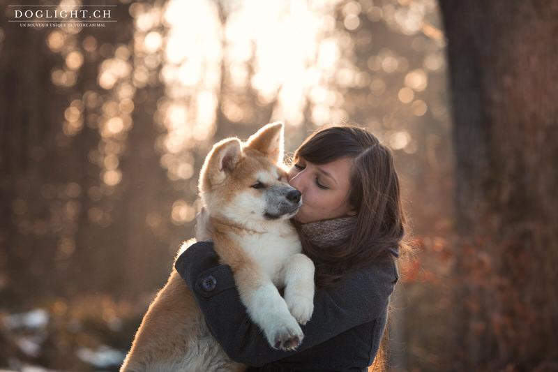 Pourquoi faire une séance photo de votre animal en hiver?