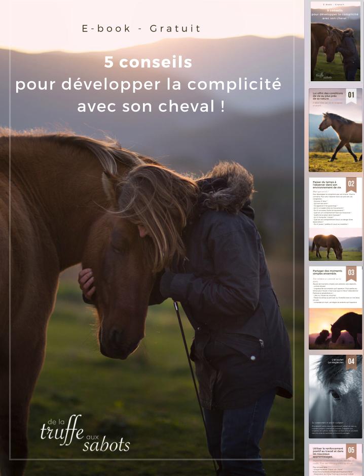 Ebook : complicité et confiance avec son cheval