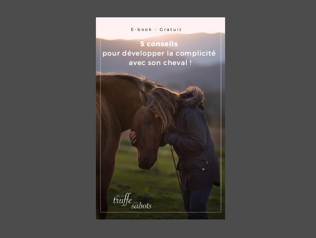 Mes photos publiées sur l'e-book : 5 conseils pour développer la complicité avec son cheval