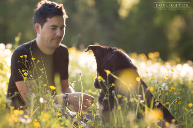 portrait chien maître dans les fleurs à Lausanne