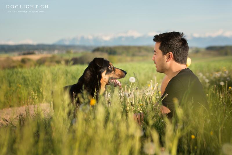 Portrait chien maître face aux Alpes