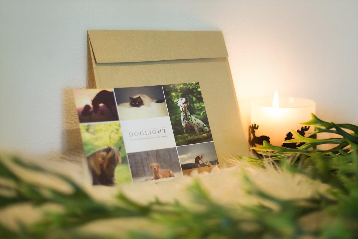 Carte cadeau à offrir pour un shooting photo