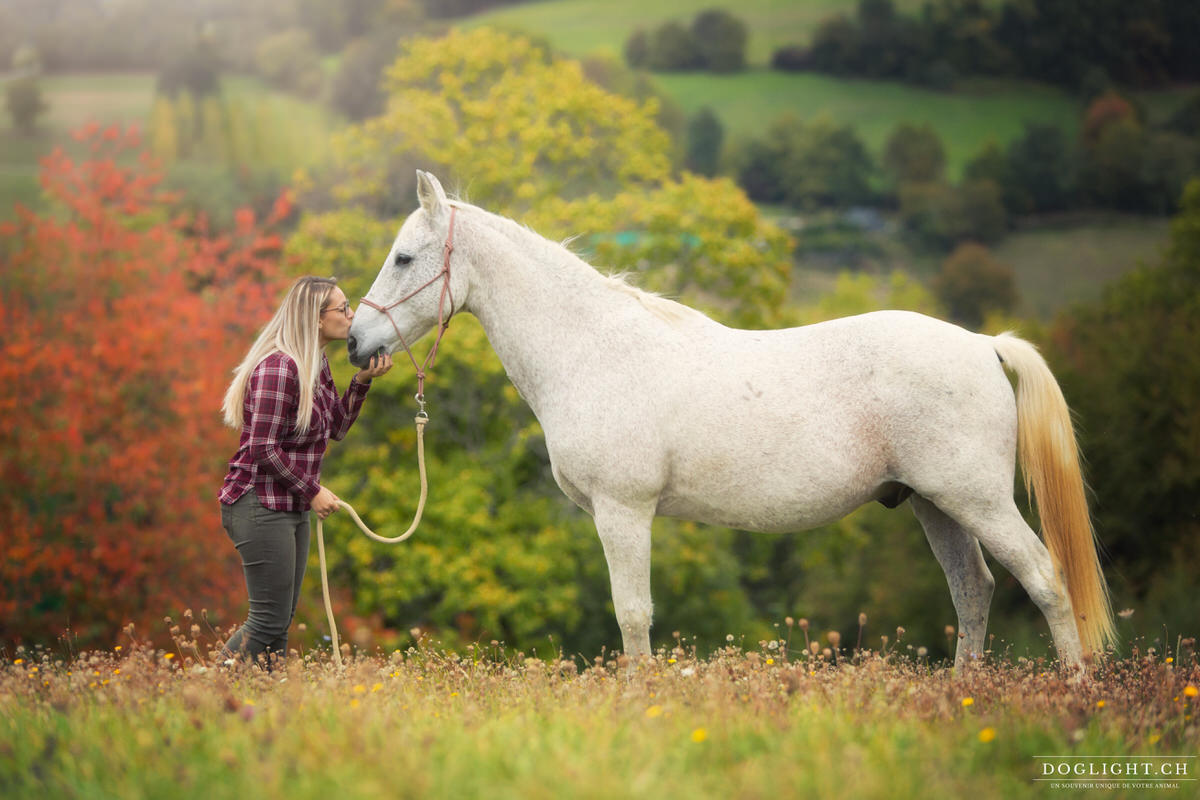 Photo câlin bisous cheval blanc dans un pré