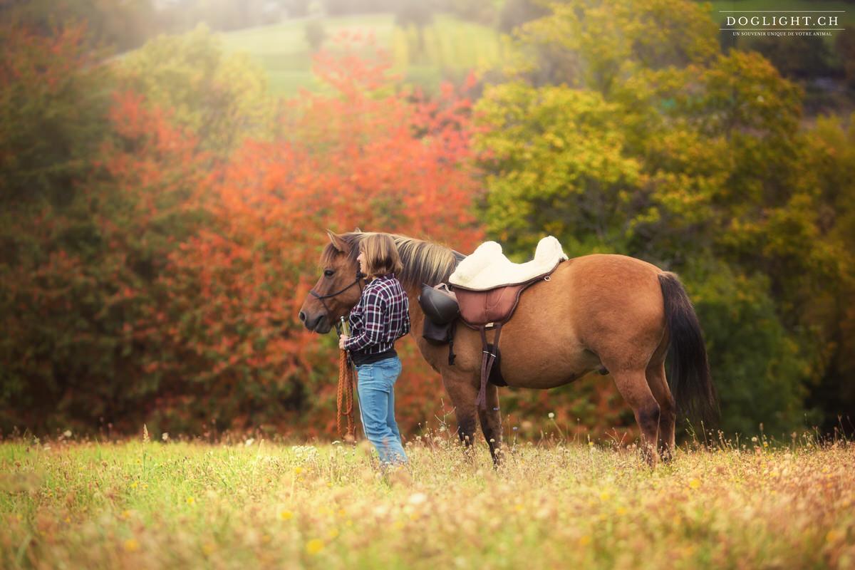Cheval avec selle américaine en automne (façon cowboy)