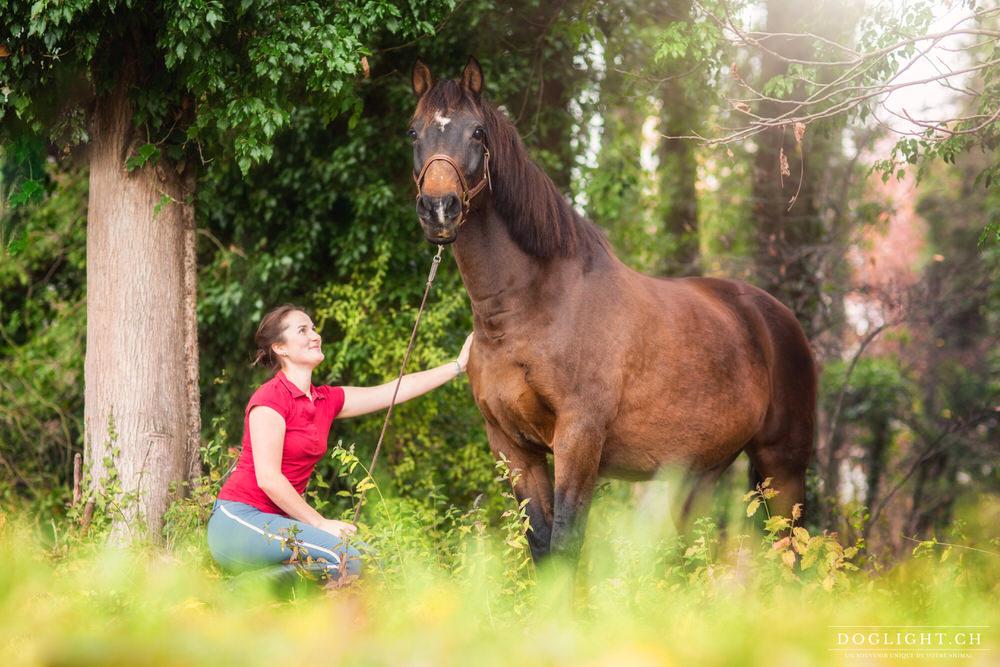 Portrait cheval et complicité