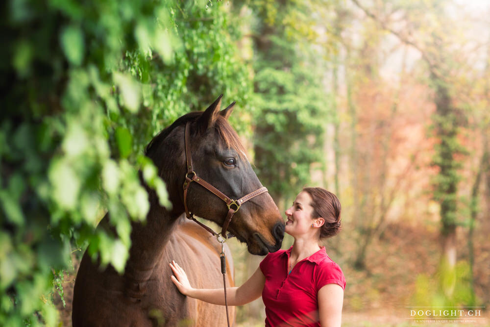 Photographie cheval / femme portrait plein de complicité