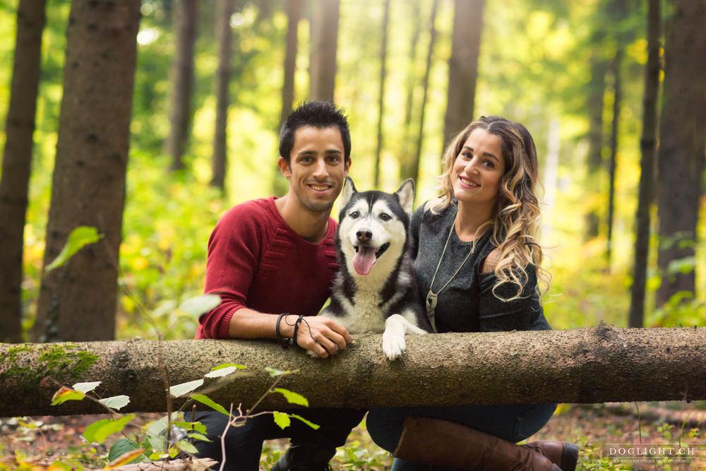 Portrait de famille avec Husky