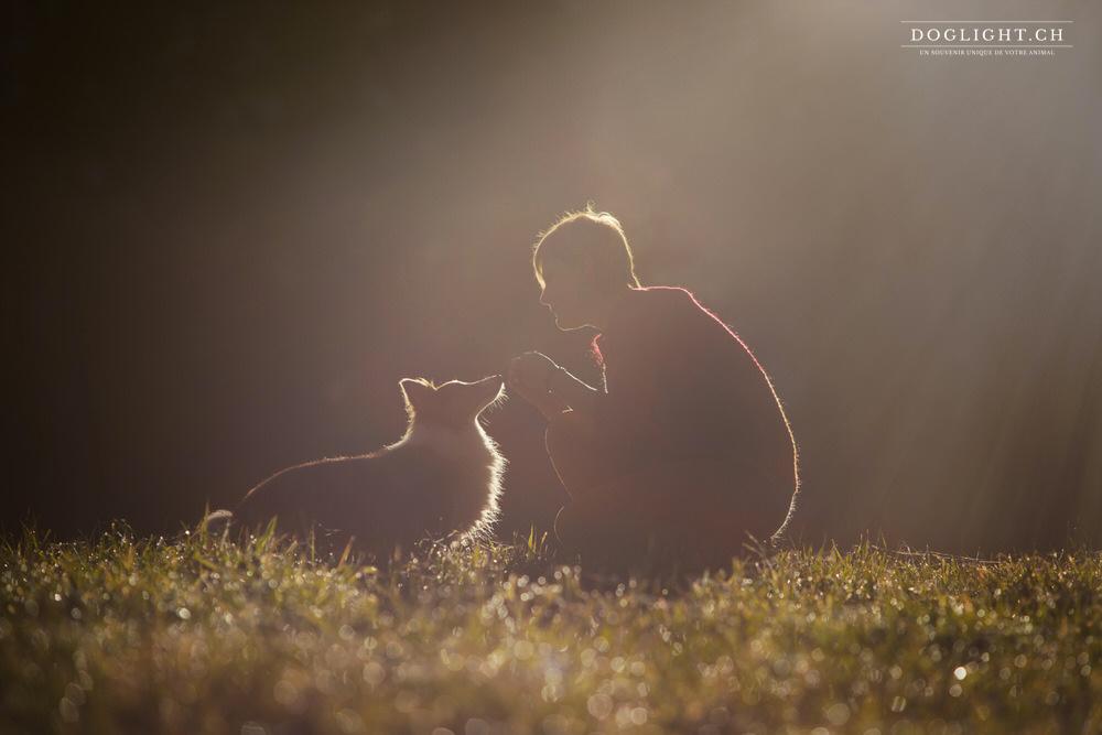 Communication intuitive avec les animaux