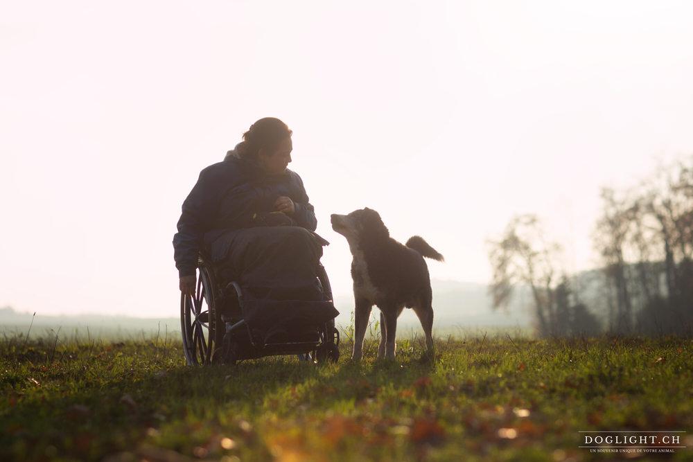 Complicité chien / handicap