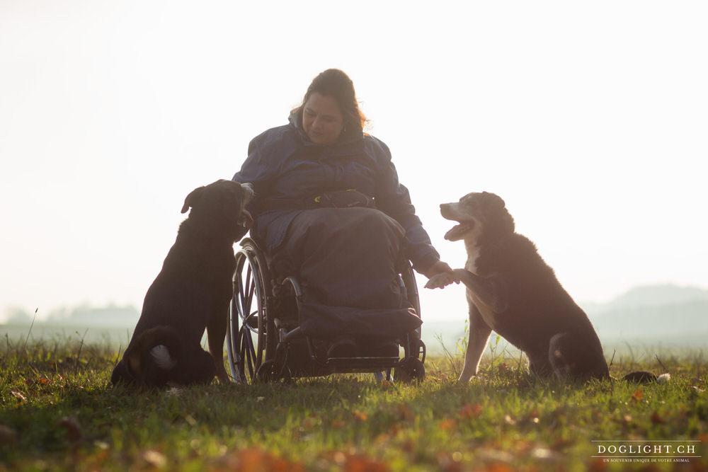 2 Bouviers appenzellois avec Aurélie en chaise roulante