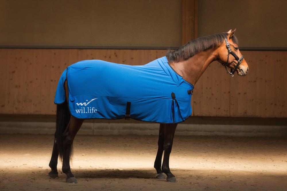 Couverture cheval anti-douleur et sport