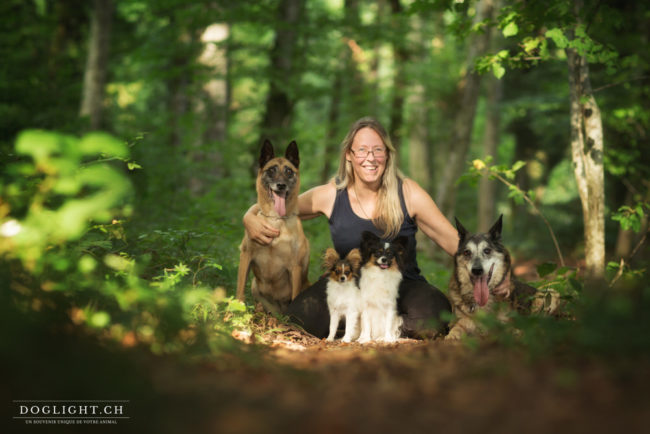 Photo famille 4 chiens : 2 malinois et 2 papillons