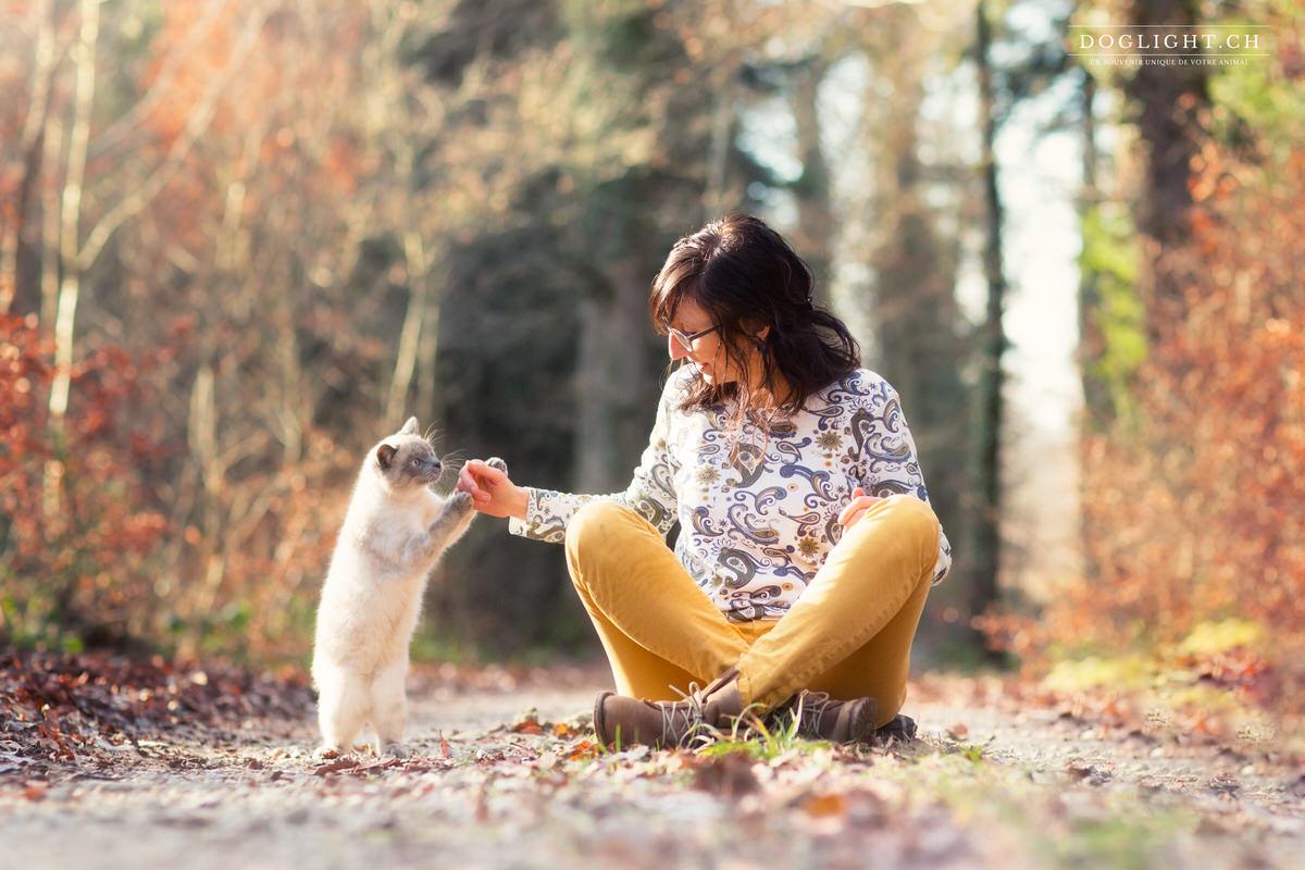 Photographe chat tour avec personne en automne
