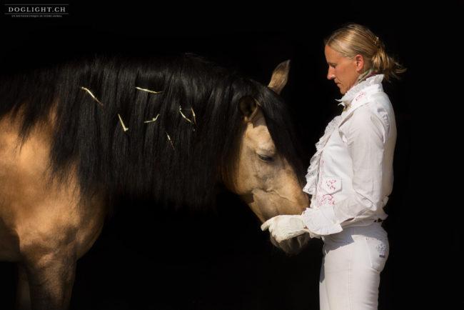 Bijoux crinière cheval de dressage