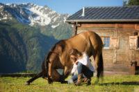 Séance photo avec trois chevaux en Valais